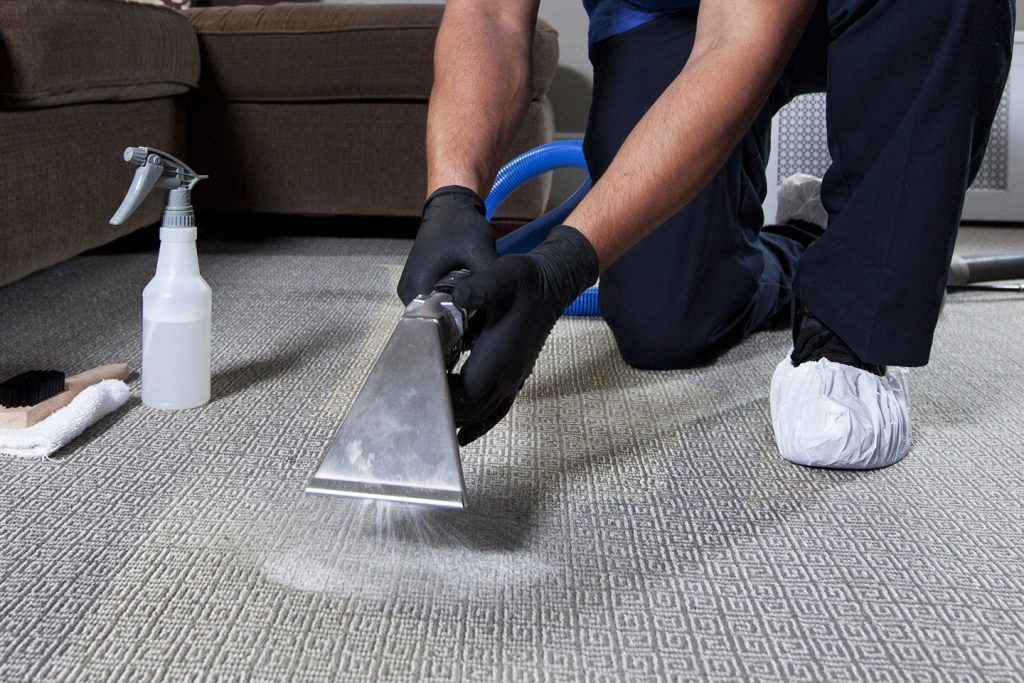 carpet cleaning midlothian